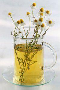 Чай з ромашки аптечної