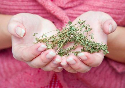 тримає трави в долонях