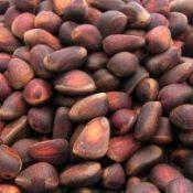 Кедровий горіх: його користь і шкода, лікування, властивості