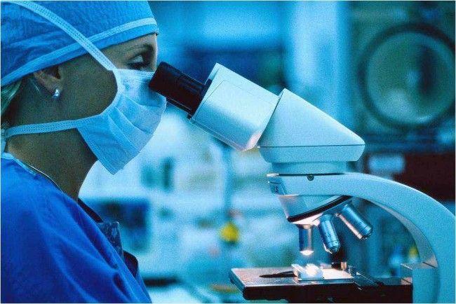 Дослідження зразка тканини