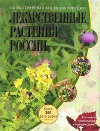 Лікарські рослини росії