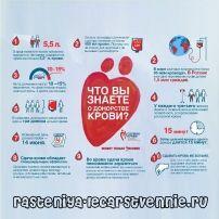 Чи корисно здавати кров на донорство жінкам і чоловікам?